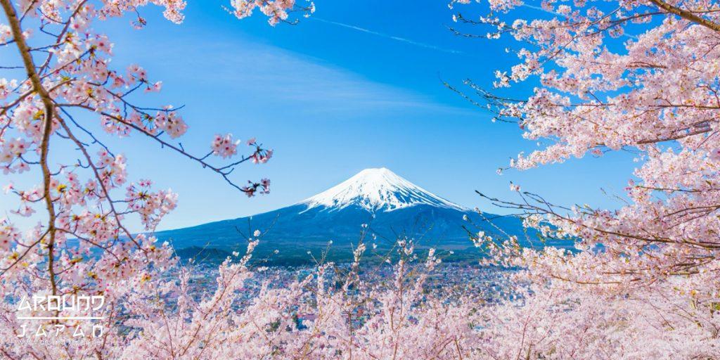 Yoshino ภูเขาสีชมพูสุดลูกหูลูกตา