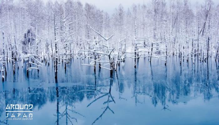 The Blue Pond บ่อน้ำสีฟ้าสุดอัศจรรย์ใน Hokkaido ประเทศญี่ปุ่นนับได้ว่าเป็นอีกหนึ่งประเทศน่าเที่ยวที่ไม่ว่าจะไปเยือนกี่รอบก็ทำให้สนุกประทับใจ
