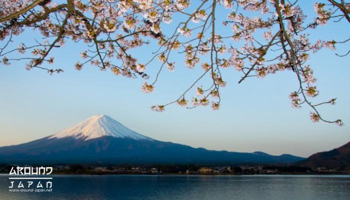 ชมภูเขาไฟฟูจิที่ทะเลสาบคาวากุจิโกะ คงปฏิเสธไม่ได้ว่า หนึ่งในสัญลักษณ์ของประเทศญี่ปุ่นก็คือ ภูเขาไฟฟูจิจุดชมภูเขาไฟฟูจิที่นิยมคือบริเวณทะเลสาบ