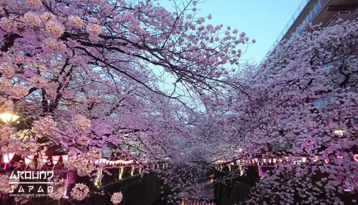 5 สถานที่เที่ยวในญี่ปุ่น วางทริปตะลุยหลังโควิด ไม่รู้ว่าอีกนานแค่ไหนเราถึงจะได้ออกไปเที่ยวนอกประเทศได้ แต่วางแผนไว้ก่อนก็ไม่เสียหาย