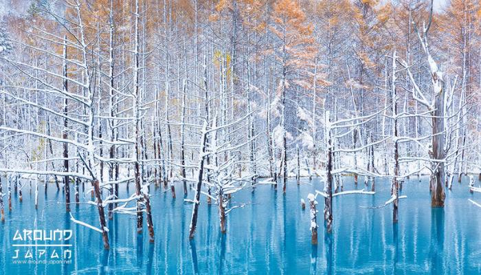 ขึ้นเหนือแดนอาทิตย์อุทัย 6 สถานที่ท่องเที่ยวญี่ปุ่น ฮอกไกโด ในลิสต์ของเพื่อนๆ จะต้องมีฮอกไกโดเพราะเป็นเมืองที่อากาศเย็นสบายมีสถานที่เที่ยว