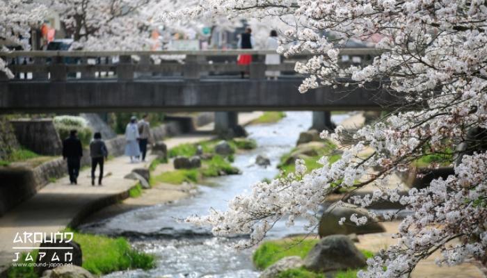 ชิมาเนะ ดินแดนแห่งทวยเทพและประวัติศาสตร์ของญี่ปุ่น ประเทศที่มีเสน่ห์มากทั้งในด้านเทคโนโลยี สถานที่ท่องเที่ยว ผู้คน ประวัติศาสตร์
